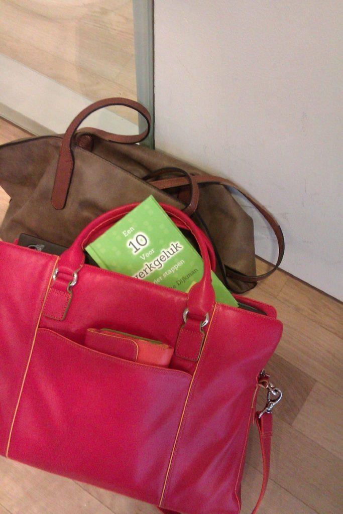 Hanneke Dijkman, Een 10 voor werkgeluk in vier stappen. New Options Boek in handtas