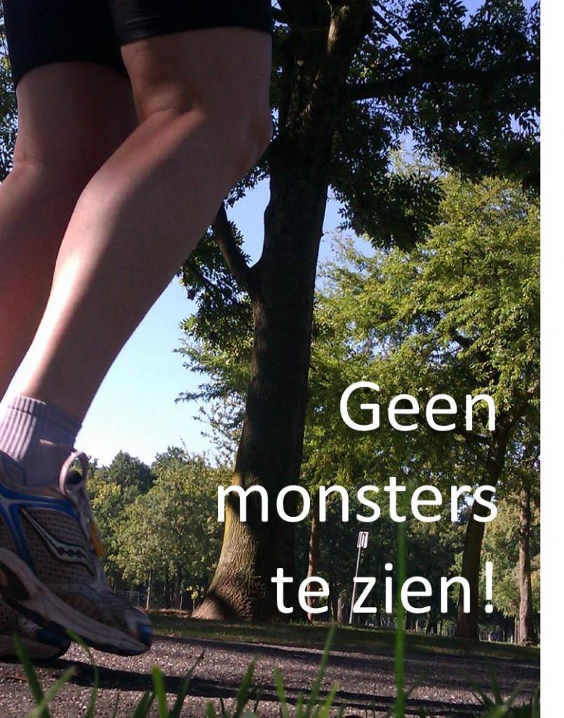 Werkgeluk, leerdoelen, voice dialogue, Rotterdam-Zuid, Geen monsters te zien