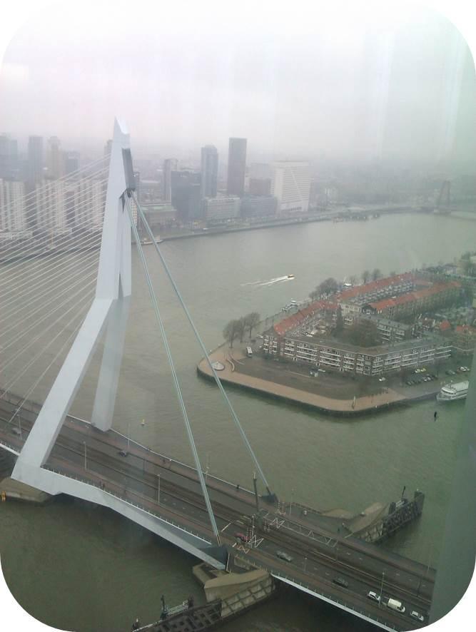 Werkgeluk, leerdoelen, voice dialogue, Rotterdam-Zuid, Erasmusbrug vanuit de hoogte