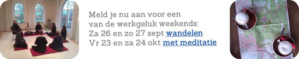 Werkgeluk, leerdoelen, voice dialogue, Rotterdam-Zuid, Oude werkgeluk weekenden