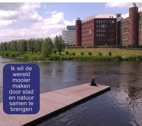 Werkgeluk, leerdoelen, voice dialogue, Rotterdam-Zuid, Ik wil de wereld mooier maken door stad en natuur samen te brengen